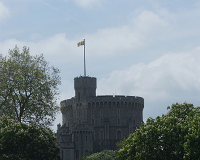 エリザベス女王のお気に入り<br>~王室御用達の紋章を探してロンドンを歩く~ 特別編 ロイヤル・ウィンザー・ホース・ショー体験記