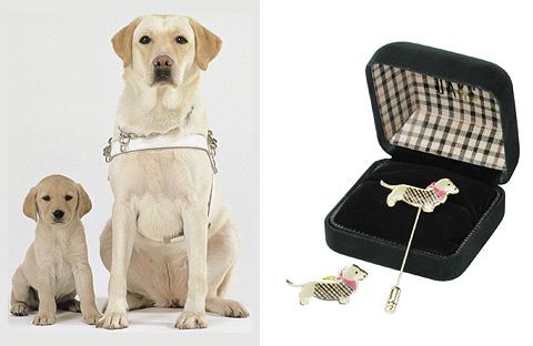 ダックス 盲導犬育成支援 チャリティーピンバッチの発売