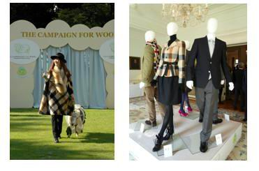 英国チャールズ皇太子提唱 ウール産業活性化キャンペーン『キャンペーン・フォー・ウール』